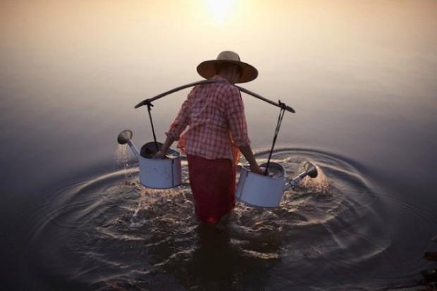 Merit Winner : Lady in Water – Marcelo Salvador